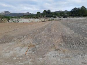 Futura plantación de aguacates