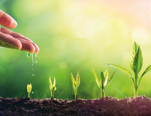 Únete a nuestra red de distribuidores de fertilizantes ecológicos en América Latina